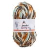 myboshi Wolle Spray 8 - Wild Indian