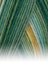 Sockenwolle Trecking XXL - 592