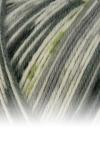 Sockenwolle Trecking XXL - 676 grau/grün meliert/gemustert